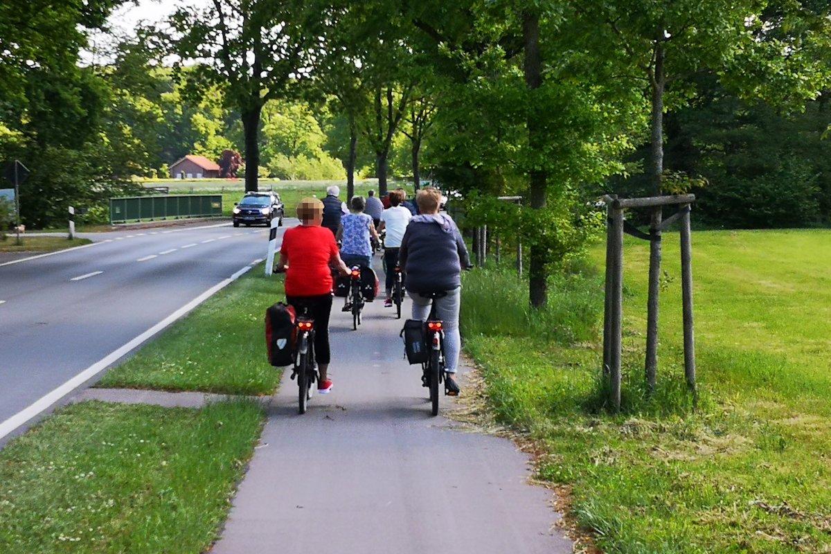 Fahrradweg im Ammerland
